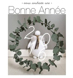 newsletter Bonne année janvier 2016
